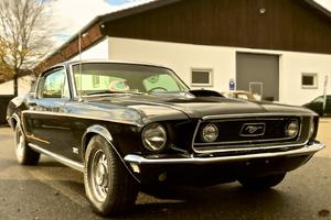 Ford Mustang Fastback 428//R-Code 1968